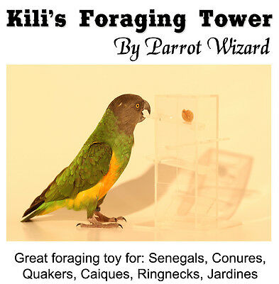 Birdie Foraging Tower - Intelligent Foraging Toy for Small Sized Parrots