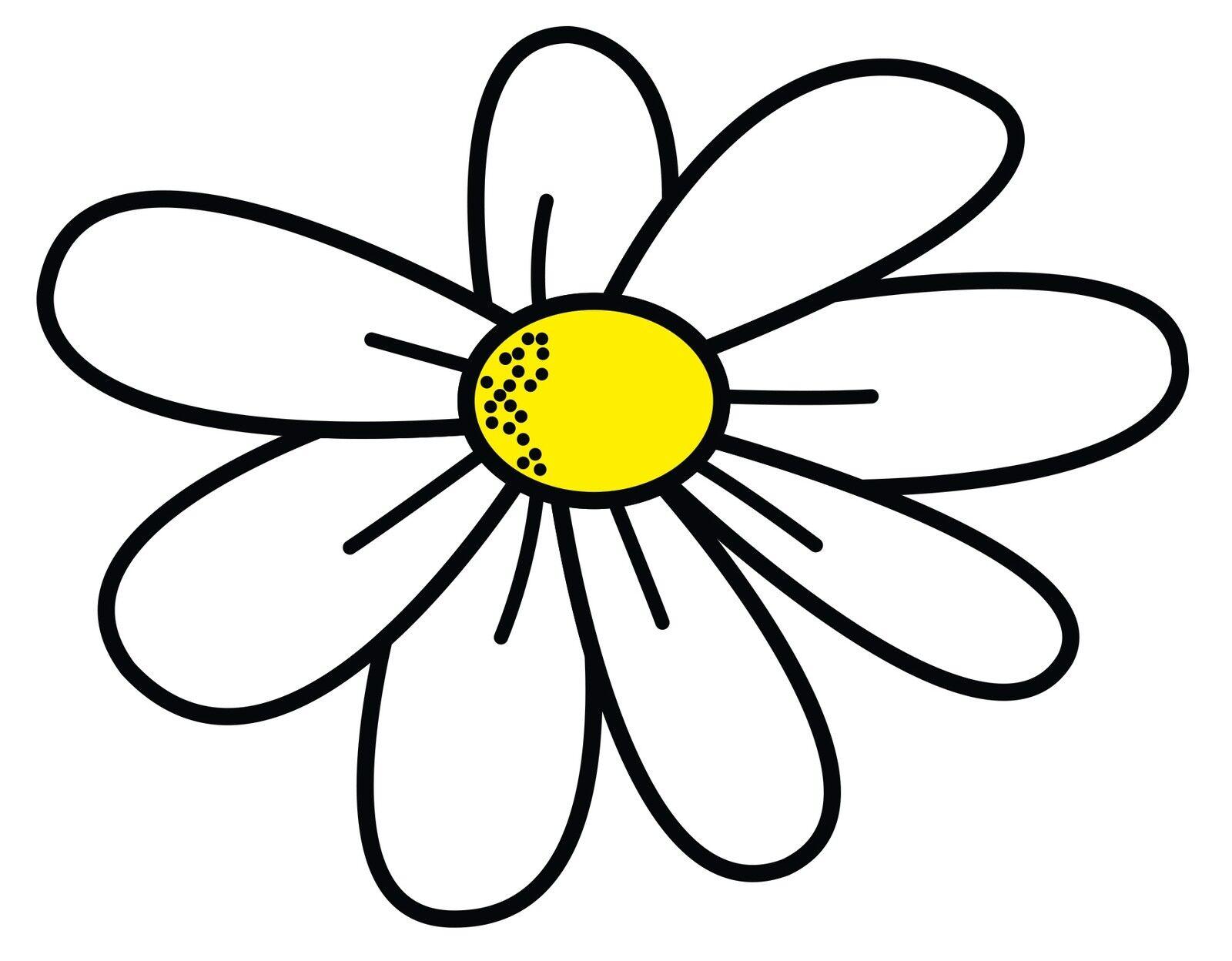Daisy-Rae Designs