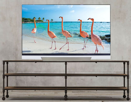 "LG 65"" Class OLED E8PUA Series 2160p Smart 4K UHD TV with HDR OLED65E8PUA"