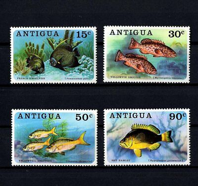 ANTIGUA - 1976 - TROPICAL FISH - ANGELFISH - GROUPER - SNAPPER + MNH - MNH SET!