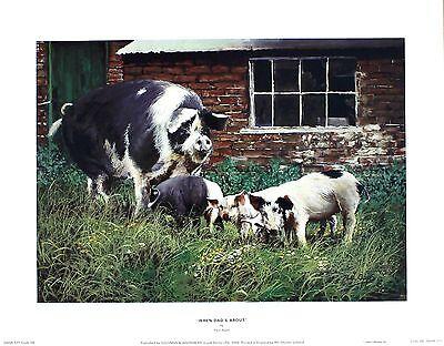 "Paul Apps ""When Dad?s About"" Farmyard Pig art SIZE:43cm x 34cm  RARE"