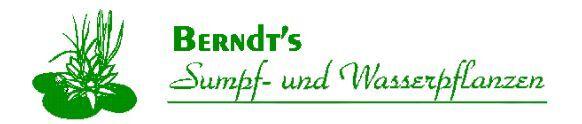 Berndts Sumpf und Wasserpflanzen