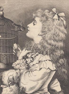 VICTORIAN GIRL PET BULLFINCH BIRD & TOY BREED DOG ANTIQUE PRINT 1875