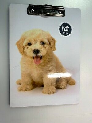Lot Of 5 Assortment Office Depot Clipboards - New