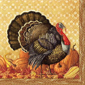 Harvest turkey Christmas Caspari luxury paper table napkins 20 pack 33cm