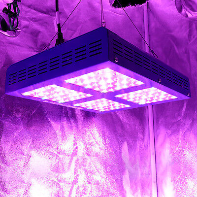 MEIZHI Reflector 600W LED Grow Light Full Spectrum Organic Growing Bloom Indoor