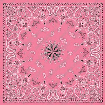 Pink Paisley Design ZANheadgear Brand Bandana Head Scarf  22