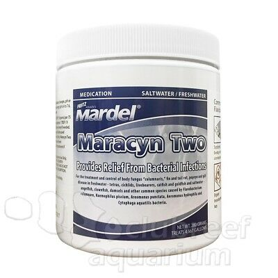 Mardel Treats - 280g Maracyn Fish Medication Freshwater/Saltwater Fritz/Mardel Treats 4667gallon
