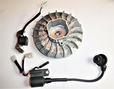 Predator 2000 Watt Inverter Generator Powerhorse Flywheel And Coil - Oem