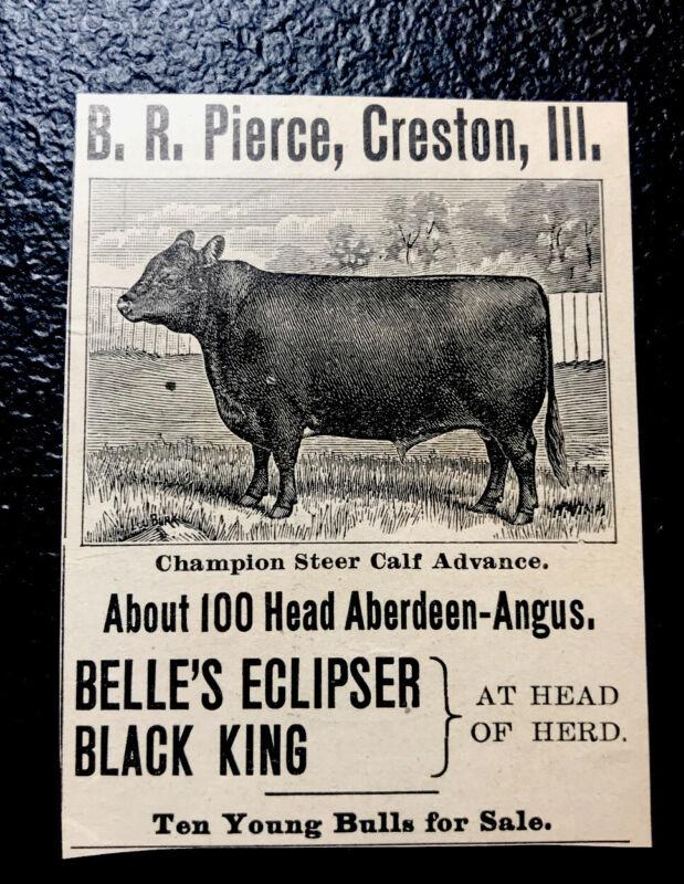 1900 Pierce Farm Cattle Advertising - Creston - Illinois - Cow