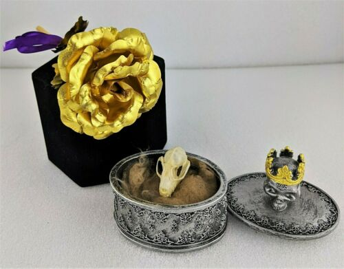 W95b 24kt Gold Rose real Bat Skull gothic trinket Collectible Curiosity Cabinet