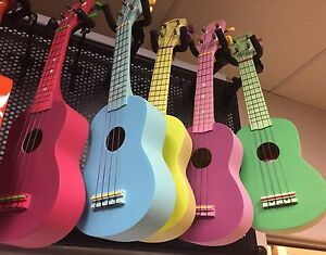 100% BRAND NEW Stagg ukulele with case :) Haymarket Inner Sydney Preview