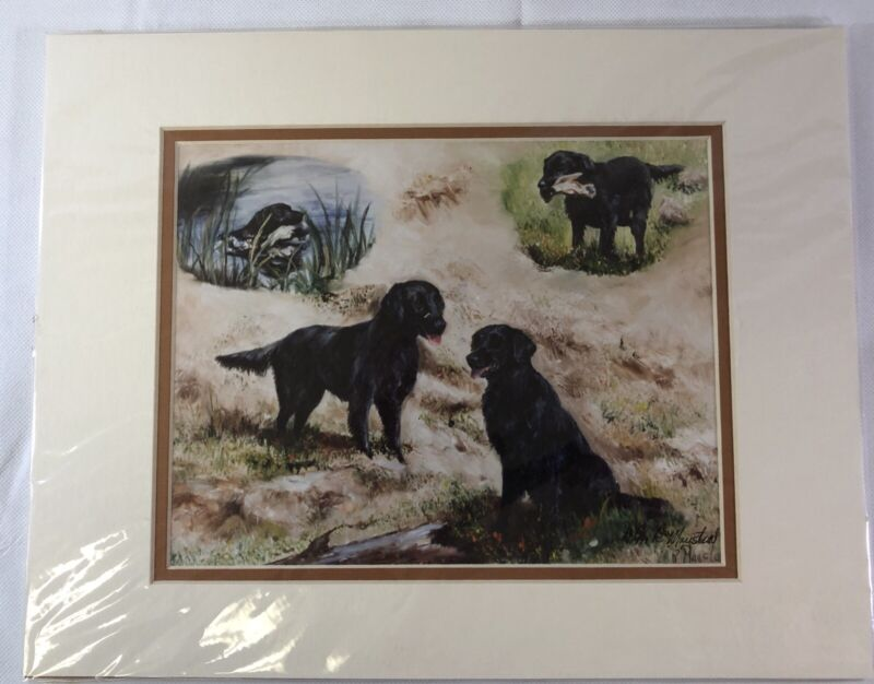 "New Flat-Coated Retriever Limited Edition Print 40/499 Size 14"" X 11""  Matted"
