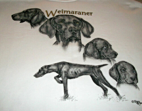 "Weimaraner Sweatshirt  "" White "" SM ( 34 ~ 36 )"