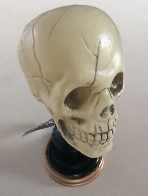 Plastic Halloween Skull On Stand Decor Scary Stage Prop - Halloween Stage Decorations