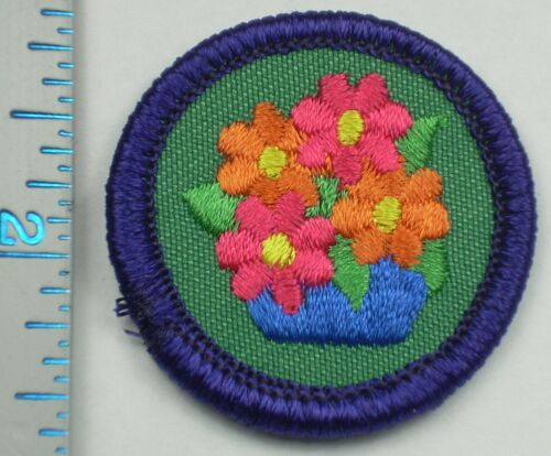 Vintage Girl Scout Badge - Art in the Home - 1980-2001 - retired