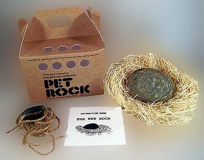 PET ROCK - New Silly Gag Gift Toy Vintage Reproduction