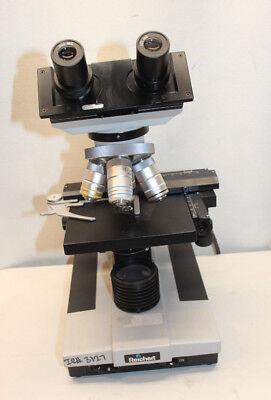 Reichert-jung 310 Microscope Professional Compound Microscope