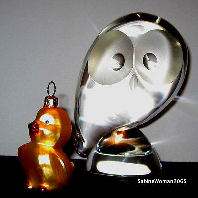 NEW in BOX STEUBEN art glass WISE OWL crystal prey bird hedwig eagle snow Athena