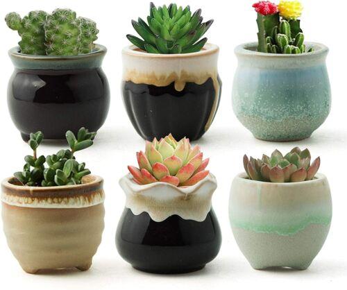 Succulent Pots Ceramic Planter Small Succulent Pot with Drainage, Set of 6