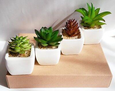 Party Favor Artificial Succulent Set in White Pots Mini Fake Plant Home Decor
