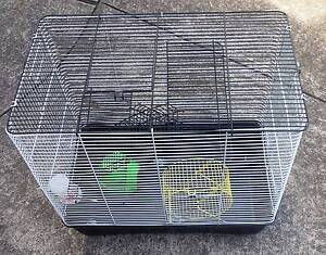 mice rat cage North Richmond Hawkesbury Area Preview
