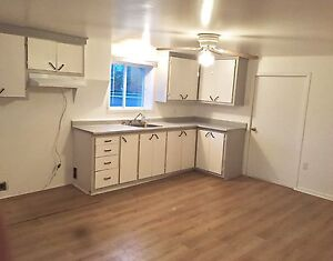 3 1/2 appartment in Ormstown on Liggett st.