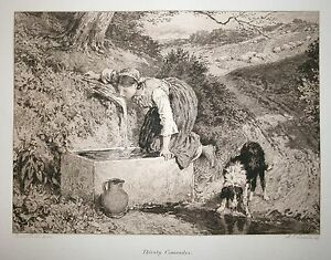 Thirsty-Comrades-19th-Century-etching-by-A-E-Coombe-after-Birket-Foster