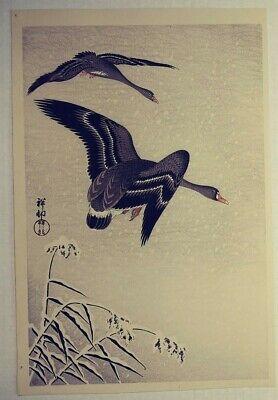 Koson Ohara Work Collection Art Book Woodblock Print Bird Animal Flower Japan