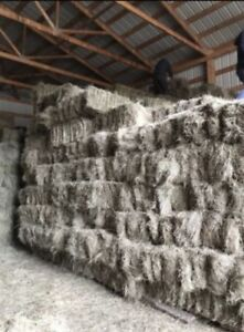 Grass square hay bales