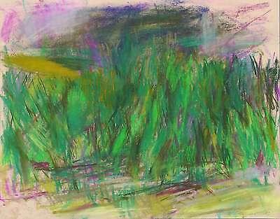 UWE PESCHEL - Landschaft - Pastellzeichnung 2013