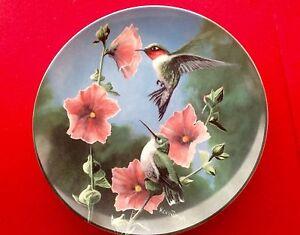 Kevin Daniel Birds of Your Garden Bird Plates Complete Set of 10 Beautiful Mint