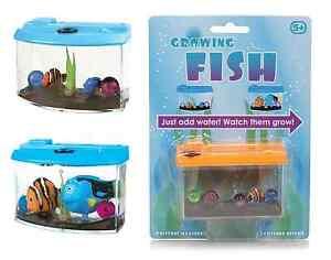 Enfants magie croissance poisson en aquarium jouet ebay for Jouet aquarium poisson