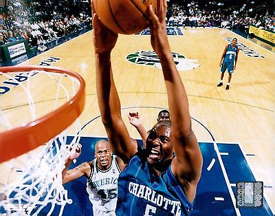 Elden Campbell Charlotte Hornets Licensed Unsigned Glossy 8X10 Photo Nba   C
