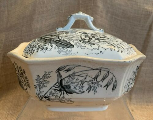 Antique Aesthetic Ashworth Black Transferware 3 Pce Butter Dish Bees & Flowers