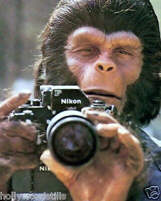 Planet of the Apes 1968 Roddy McDowell with a Nikon camera movie 8x10 rare photo