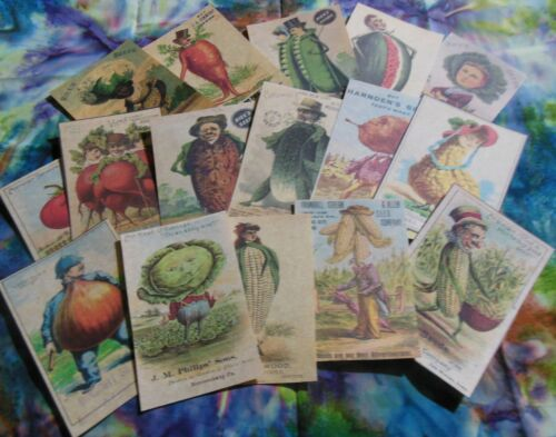 Set of 16 LARGE Seed Pack Victorian Anthropomorphic images —Set # 1 seed packets