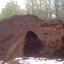 Peat moss for sale