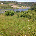 Pond frontage..One acre..70 mins from St. John's