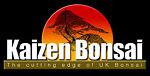 kaizen_bonsai