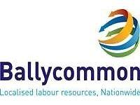 CSCS Demolition Labourers needed ASAP