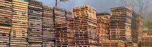 large quantity pallet skid wanted 905-670-9049 toronto pallet