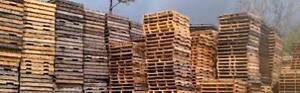 large quantity pallet skid buy & sell, 905-670-9047