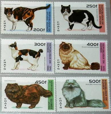 GUINEA 1996 1603 08 1361 1366 TIERE KATZEN CATS DOMESTIC ANIMALS FAUNA MNH