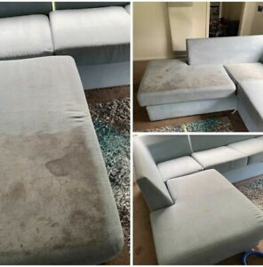 Carpet steam cleaning and house cleaning $30
