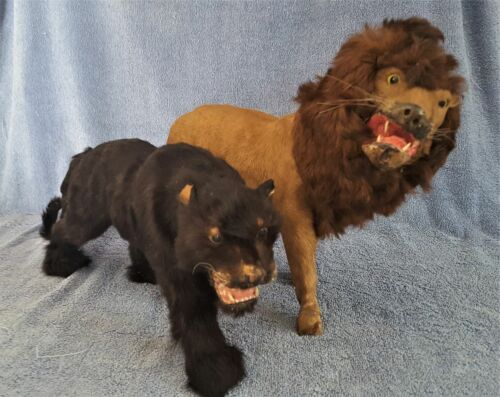 ANTIQUE MINIATURE LION AND BLACK PANTHER TAXIDERMY – REAL FUR!