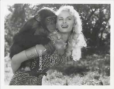 IRISH MCCALLA 8X10 PHOTO MADE BY IRISH IN THE 1980'S FROM HER COLLECTION BOX