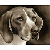 TREEING WALKER COONHOUND Watercolor ART Print Signed by Artist DJR