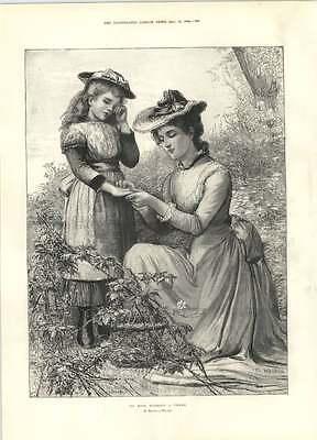Marcella Rose (1894 No Rose Without The Son Marcella Walker Volunteer Ambulance Challenge Shiel)