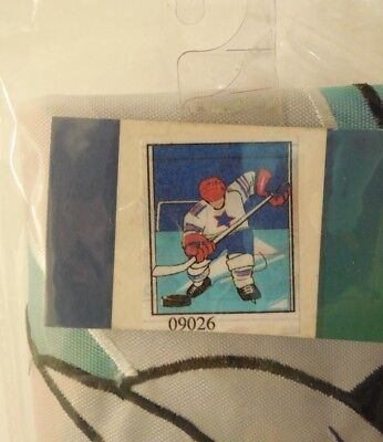 CLR Winter Patriotic Hockey Player takes Ice, Puck & Stick, applique HOUSE flag